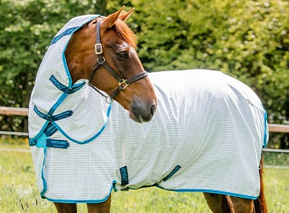Horse Fly Rugs and Fly Masks