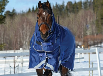 Winter Turnout Horse Rugs