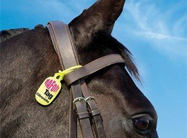 Fly Repellents/Sweet Itch