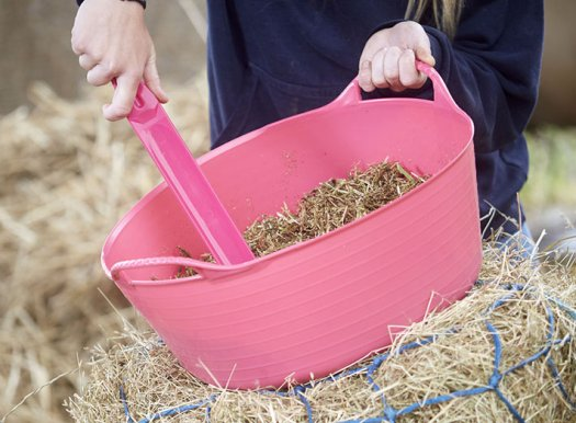 Feed and Water Buckets