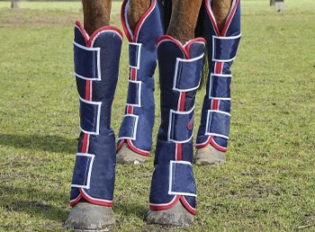 Horse Travel Boots and Accessories