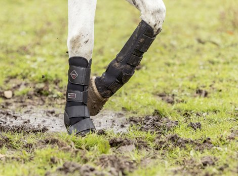 Turnout and Stable Boots