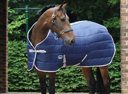 Summer Stable Horse Rugs