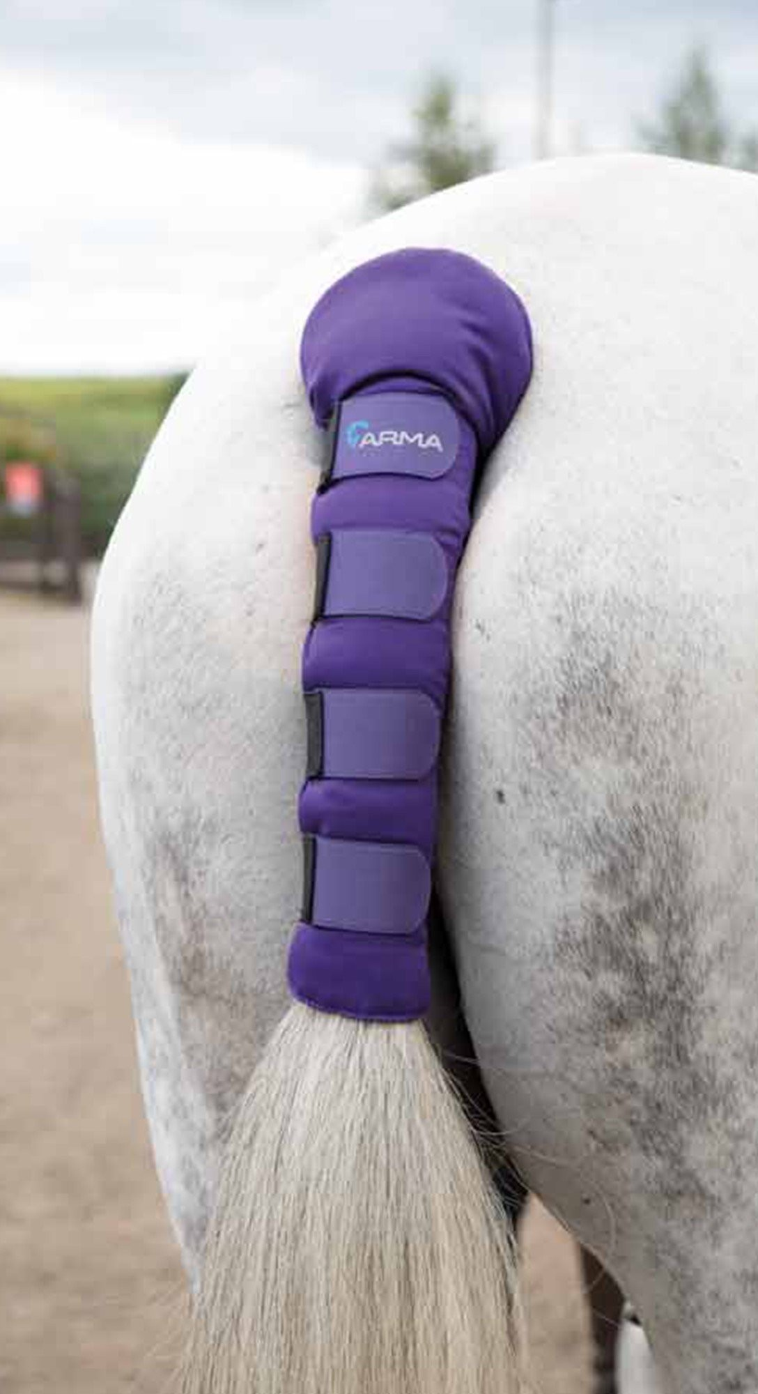 Shires ARMA Padded Tail Guard - Townfields Saddlers