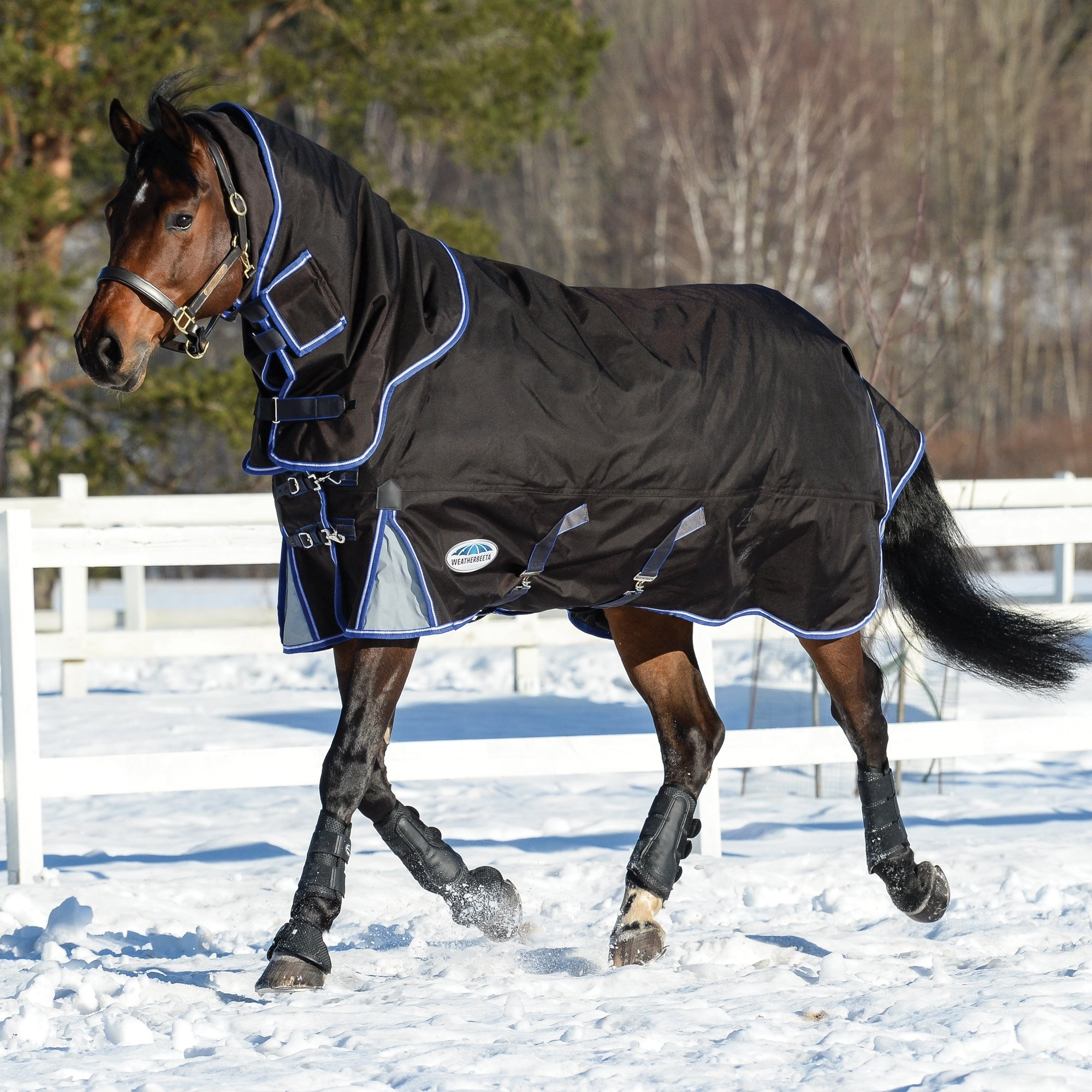 Details about  /Weatherbeeta Comfitec Ultra Tough Ii Detach-a-neck Medium Horse Rug Turnout