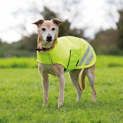 Shires EQUI-FLECTOR Waterproof Dog Coat