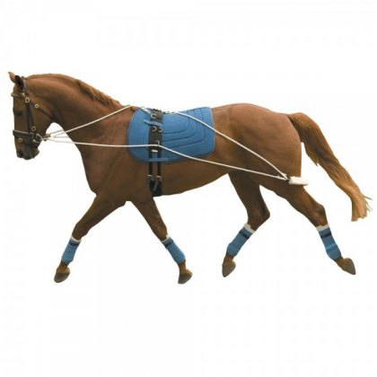 Kincade Lunging Training System