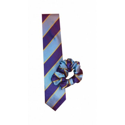 Equetech Junior Pony Club Colour Tie and Scrunchie