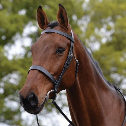 Kincade Hunt Cavesson Snaffle Bridle